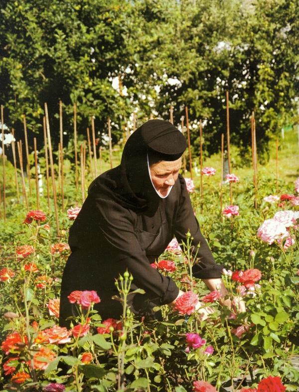 Activitati agricole - Manastirea Samurcasesti