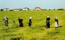 Ora et labora la manastirile Samurcasesti si Ghighiu
